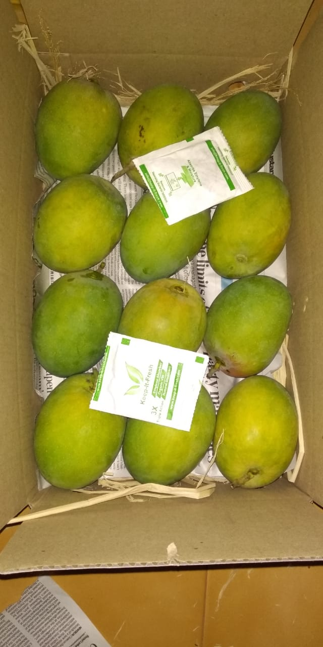 kif sachet mangoes (2)